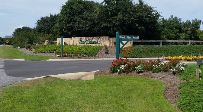 The Pine Island Community